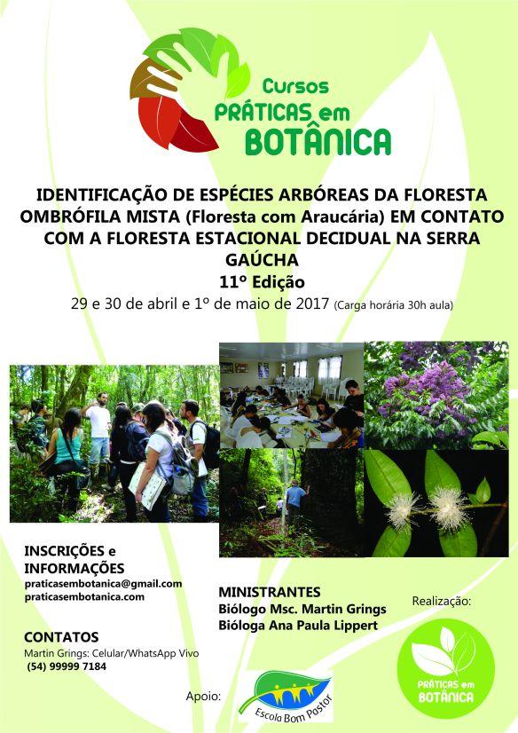 cartaz-curso-nova-petropolis-2017